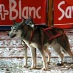 Megève, Savoie Mont Blanc