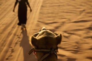Jordanie, Wadi Rum, désert